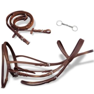 Nahast valjad, ratsmed ja suuline hobusele, pruun