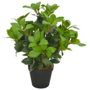 Pood24 kunsttaim loorberipuu potiga, roheline, 40 cm